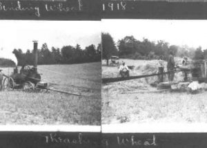 Steam Thresh and Binder in Calvert County, 1918.