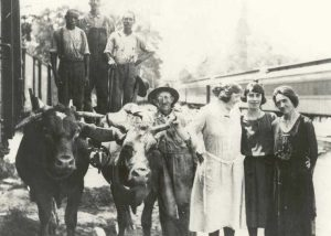 1920-1929 Oxen and People at Chesapeake Beach Railway Station